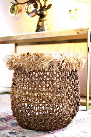 Canastos Palm